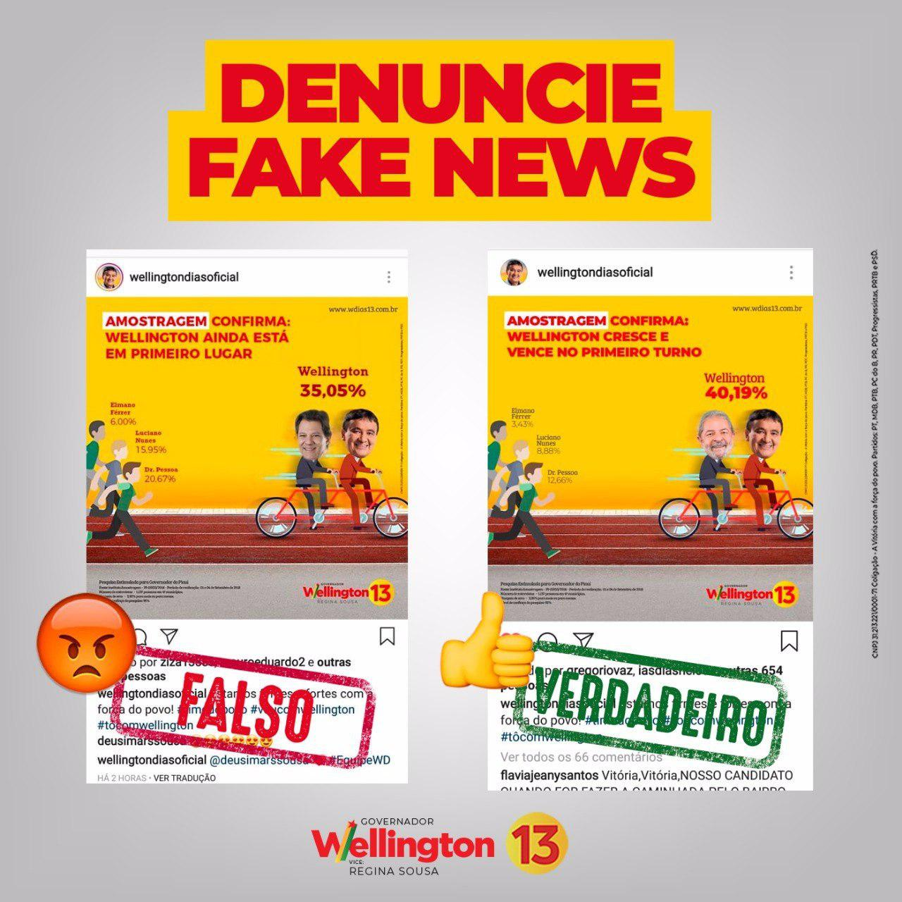 fake news Wellington Dias